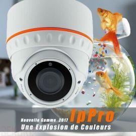 Caméra IP 2MP Dôme IR WDR